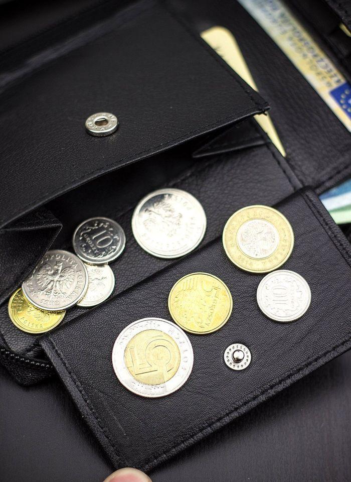 Skórzany portfel męski duży na suwak STEVENS