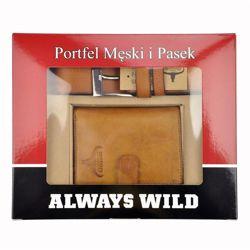 Always Wild PSB-D1072L-01-GG brązowy